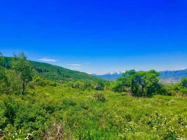 431 Camp Aerie Dr, Kamas, UT 84036 (#1756885) :: Powder Mountain Realty