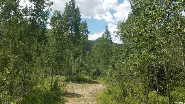 6700 E Orange Rock Rd #50, Oakley, UT 84055 (#1757343) :: Powder Mountain Realty