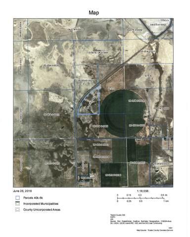 8000 Burmester Rd, Grantsville, UT 84029 (#1757385) :: Powder Mountain Realty