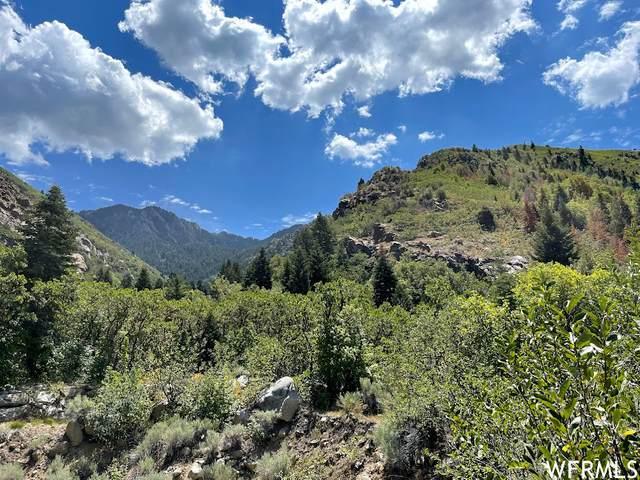 11564 S Big Willow Ct E, Sandy, UT 84092 (#1757635) :: Utah Real Estate