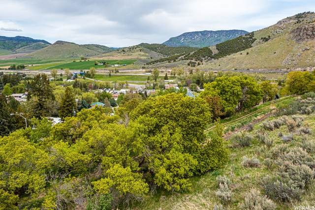 Address Not Published, Lava Hot Springs, ID 83246 (MLS #1757637) :: Lookout Real Estate Group