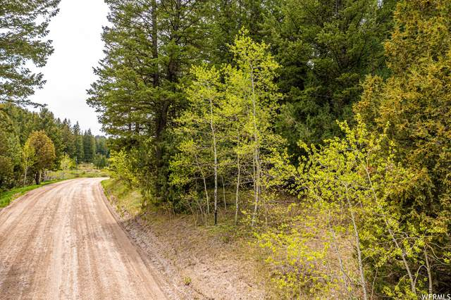 Address Not Published, Lava Hot Springs, ID 83246 (MLS #1757640) :: Lookout Real Estate Group