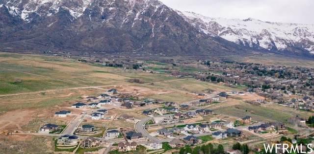 4251 N 1225 W #81, Pleasant View, UT 84414 (MLS #1757758) :: Lawson Real Estate Team - Engel & Völkers