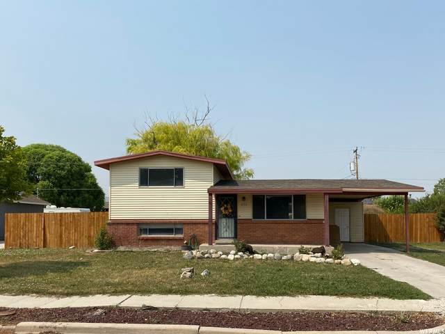 236 W 1025 S, Garland, UT 84312 (#1757879) :: C4 Real Estate Team