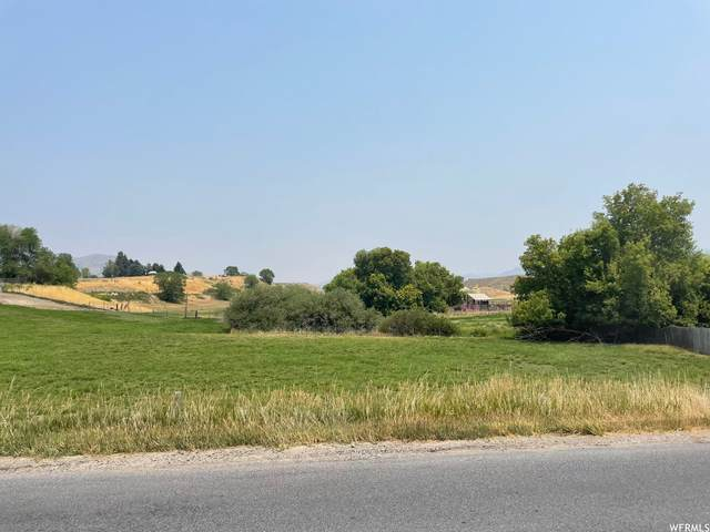 1745 N 2400 W, Malad City, ID 83252 (#1758284) :: Colemere Realty Associates
