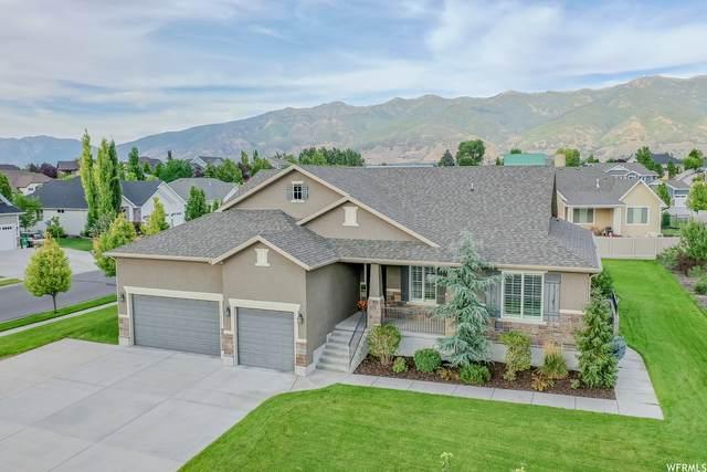 1463 S Kentucky Derby Way, Kaysville, UT 84037 (#1758285) :: Utah Real Estate