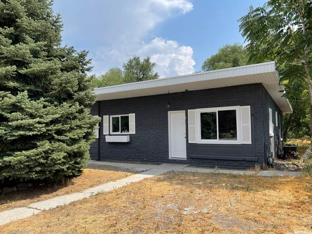 815 W 1020 N, Provo, UT 84604 (#1759132) :: Colemere Realty Associates