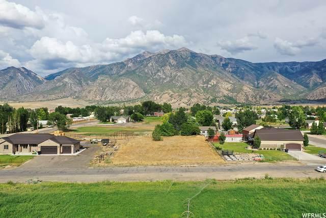 351 S 200 W, Mona, UT 84645 (#1759295) :: Utah Best Real Estate Team   Century 21 Everest