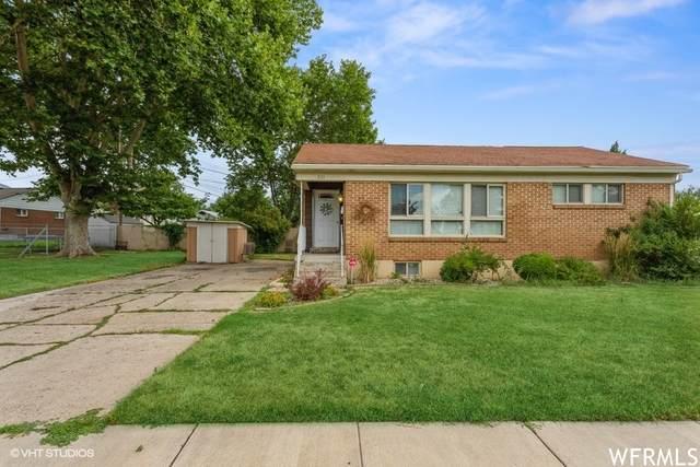 231 E 4300 S, Washington Terrace, UT 84405 (#1759472) :: Doxey Real Estate Group