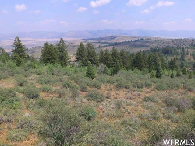 925 Old Oregon Rd #70, Soda Springs, ID 83276 (MLS #1759622) :: Summit Sotheby's International Realty