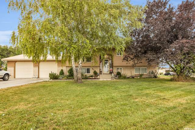5101 W 1500 N, Plain City, UT 84404 (#1759667) :: Doxey Real Estate Group
