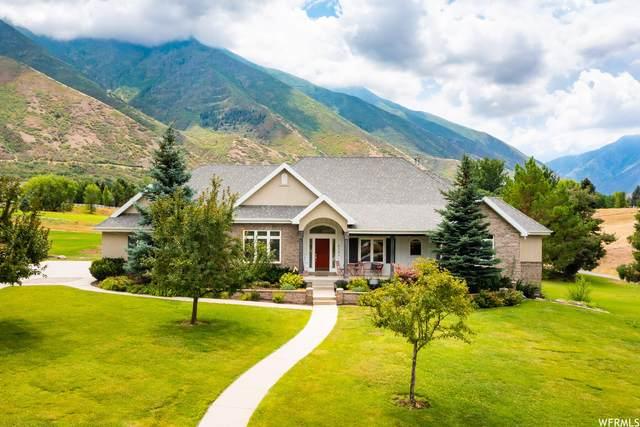 856 Hawks Rest Dr, Mapleton, UT 84664 (#1759919) :: Utah Dream Properties