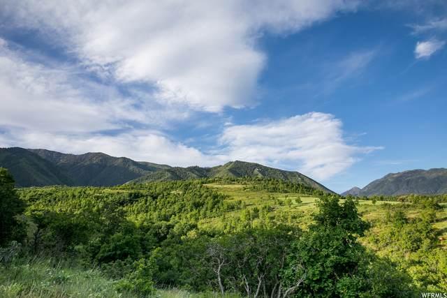 718 S Nebo Cir #12, Woodland Hills, UT 84653 (#1760240) :: Utah Real Estate