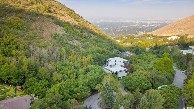 3116 E Carrigan Canyon Dr, Salt Lake City, UT 84109 (MLS #1760550) :: Summit Sotheby's International Realty