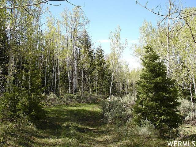 Address Not Published, Heber City, UT 84032 (MLS #1760902) :: High Country Properties