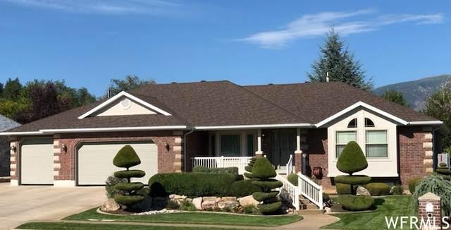 1612 Willow Dr, Kaysville, UT 84037 (#1760958) :: Zippro Team