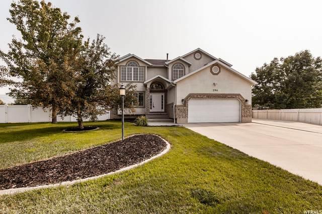 294 E Stonebridge Dr, Draper, UT 84020 (MLS #1761361) :: Lookout Real Estate Group