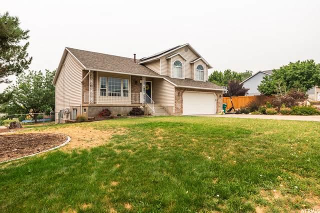 6755 S 1775 E, Uintah, UT 84405 (MLS #1762358) :: Lookout Real Estate Group