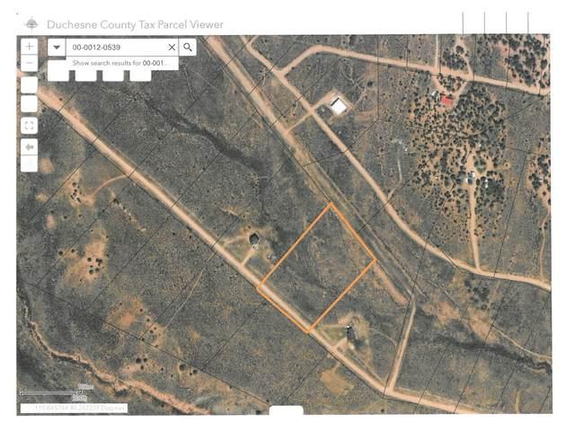 Address Not Published #230, Fruitland, UT 84027 (MLS #1762418) :: Lookout Real Estate Group