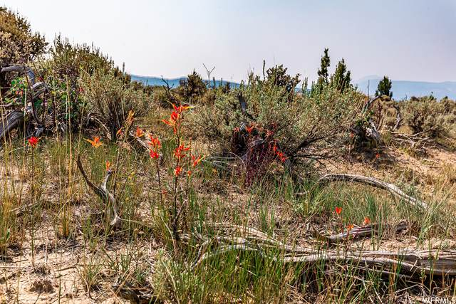 1 S Pinnecle, Salina, UT 84654 (#1763174) :: Bustos Real Estate | Keller Williams Utah Realtors