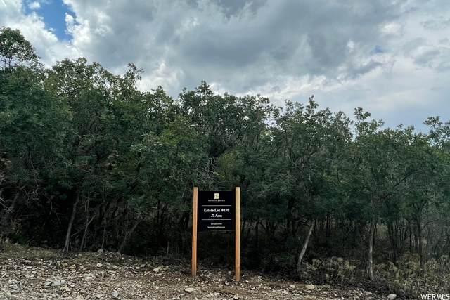 30 E Deer Meadow Ct #139, Woodland Hills, UT 84653 (#1763276) :: The Fields Team