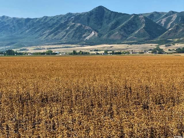 600 N Highway 23, Mendon, UT 84325 (#1764225) :: Bustos Real Estate   Keller Williams Utah Realtors