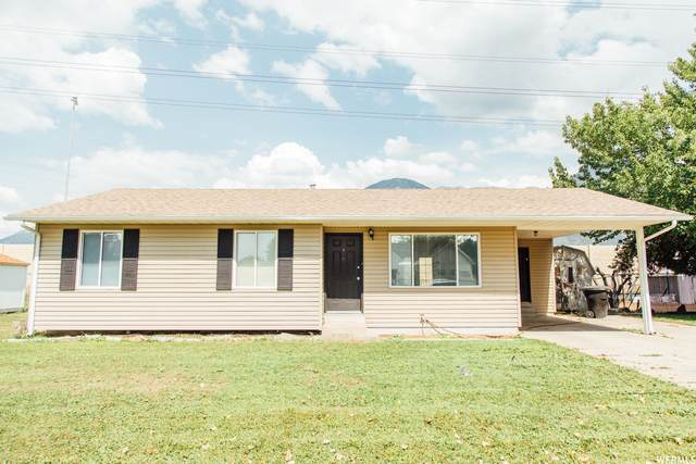 1571 S 300 W, Provo, UT 84601 (MLS #1764274) :: Lookout Real Estate Group