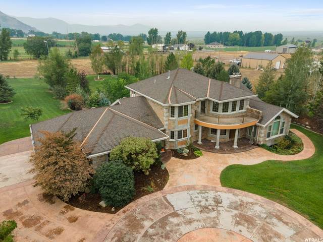 229 W 800 S, Genola, UT 84655 (#1765174) :: Doxey Real Estate Group