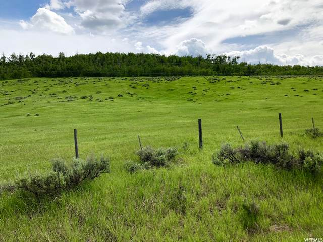 Address Not Published, Soda Springs, ID 83276 (MLS #1766212) :: Summit Sotheby's International Realty