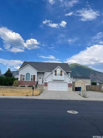 1103 S 2230 E, Spanish Fork, UT 84660 (#1766389) :: Utah Real Estate