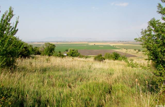 14400 N Mountain Home Rd, Cove, UT 84320 (#1766419) :: Colemere Realty Associates