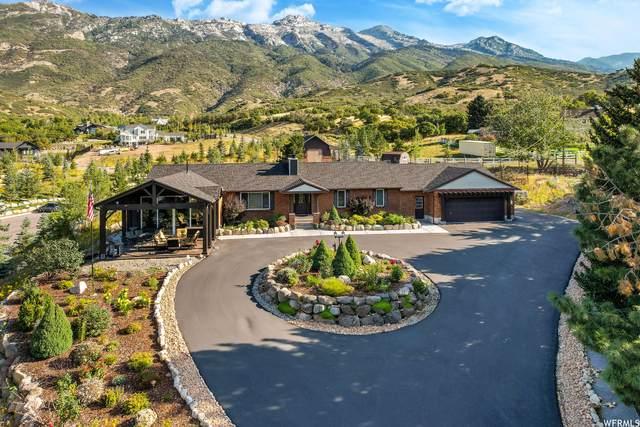 1801 N Fort Canyon Rd, Alpine, UT 84004 (#1767192) :: goBE Realty