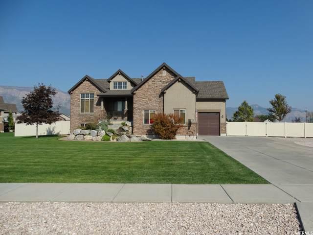 2932 N 3550 W, Plain City, UT 84404 (MLS #1767311) :: Lookout Real Estate Group