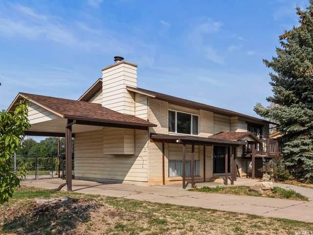 1183 N Virginia Ave W, Harrisville, UT 84404 (MLS #1767564) :: Lookout Real Estate Group