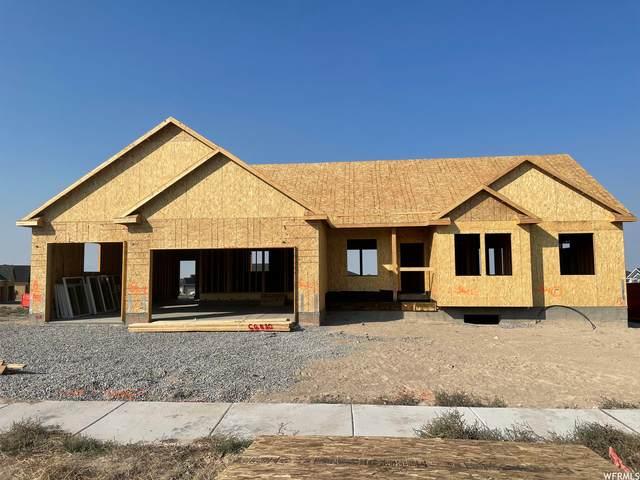 778 W Wild Cherry Way, Grantsville, UT 84029 (#1767606) :: Doxey Real Estate Group