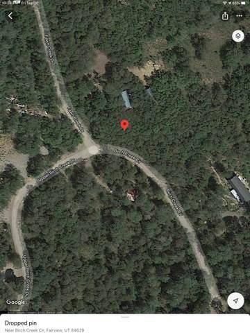 Address Not Published L-29, Fairview, UT 84629 (#1768408) :: Utah Dream Properties