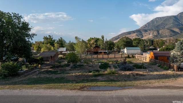 Address Not Published, Nephi, UT 84648 (MLS #1768620) :: Lookout Real Estate Group