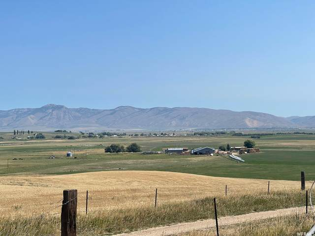 Address Not Published, Montpelier, ID 83254 (MLS #1768672) :: Summit Sotheby's International Realty