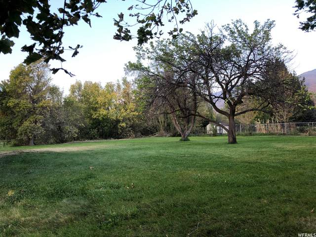 703 E 100 S, Kaysville, UT 84037 (#1769027) :: Utah Dream Properties