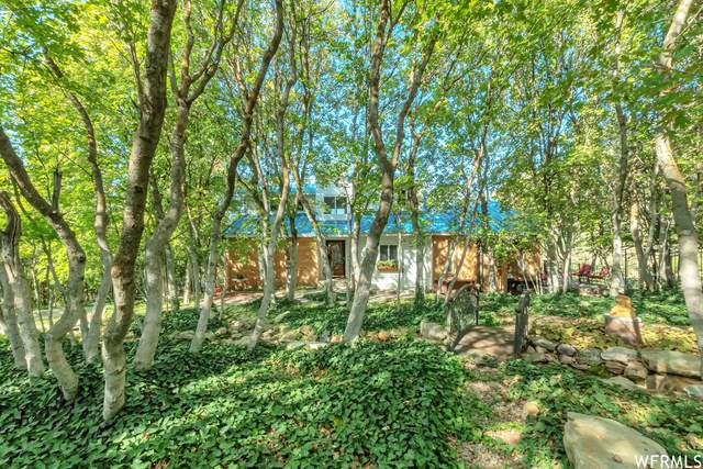 410 S Maple Dr, Woodland Hills, UT 84653 (#1769257) :: The Lance Group