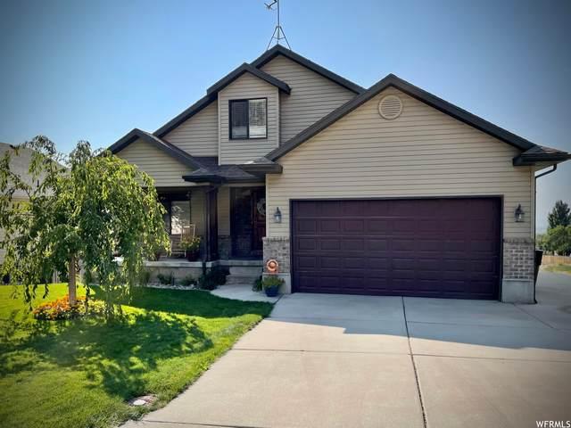 634 S Appaloosa Cir, Willard, UT 84340 (#1769609) :: Berkshire Hathaway HomeServices Elite Real Estate