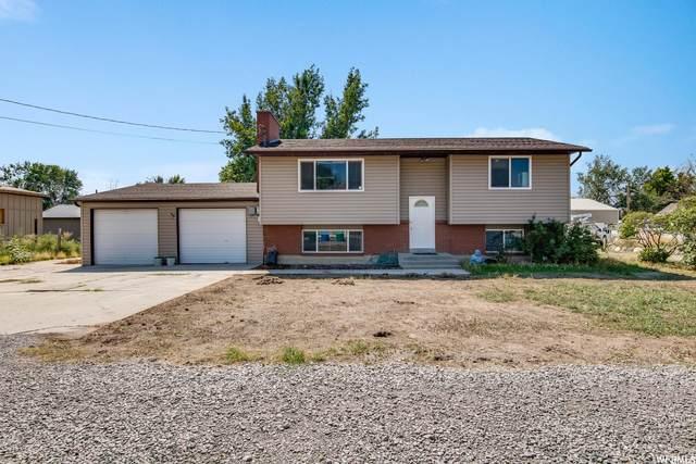 243 W 300 S, Lehi, UT 84043 (MLS #1769627) :: Lawson Real Estate Team - Engel & Völkers