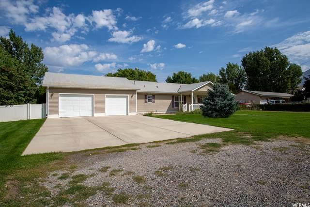 980 W Maple St, Mapleton, UT 84664 (#1769797) :: Utah Dream Properties