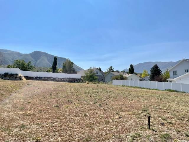 346 E Alpine Dr N, Elk Ridge, UT 84651 (#1769893) :: Belknap Team