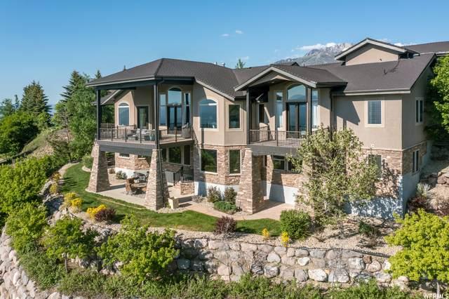 1457 E Meadow Bluff Ln, Draper, UT 84020 (MLS #1769911) :: Summit Sotheby's International Realty