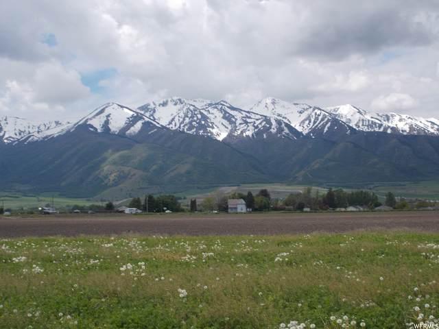 3797 W 6100 S, Wellsville, UT 84339 (#1769920) :: Bustos Real Estate   Keller Williams Utah Realtors