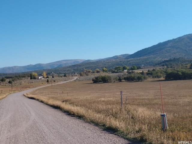 14275 N Meadow Rd, Mount Pleasant, UT 84647 (#1771180) :: Villamentor