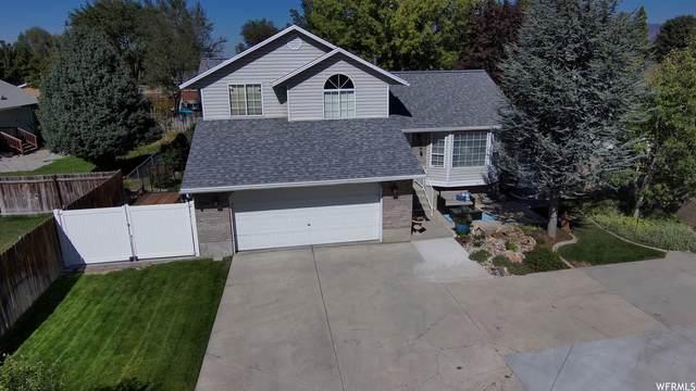 7731 S Casa Verde, Midvale, UT 84047 (#1771251) :: McKay Realty