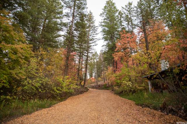 7060 N Beehive Rd, Pocatello, ID 83201 (#1771432) :: Bear Phelps Group