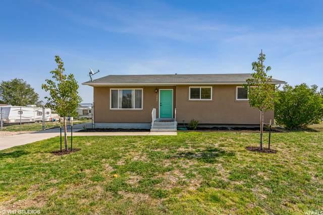 3843 S Belfast Dr, Magna, UT 84044 (#1771452) :: Utah Dream Properties